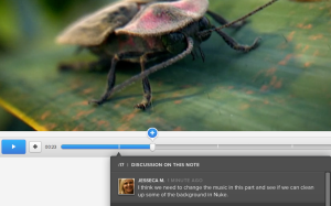 Cage commentaire video